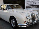 Noleggio Jaguar MK2 matrimoni cerimonie eventi Napoli De Simone Wedding Service 1